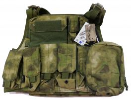 Flyye Plate Carrier avec poches (M / A-Tacs FG)