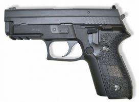 WE P229 Rail GBB (F229 / Noir)