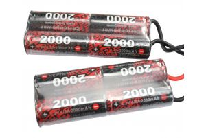 EnrichPower Batterie NiMh 9.6v 2000mAh Double Pack