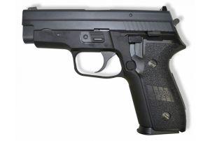 WE P229 GBB (F229 / Noir)