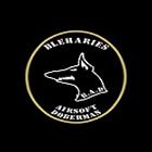 Logo du partenaire airsoft B . A . D