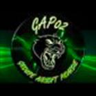 Logo du partenaire airsoft GAP 02