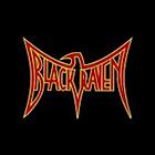 Logo du partenaire airsoft Black Raven