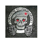 Logo du partenaire airsoft TEAM DEA
